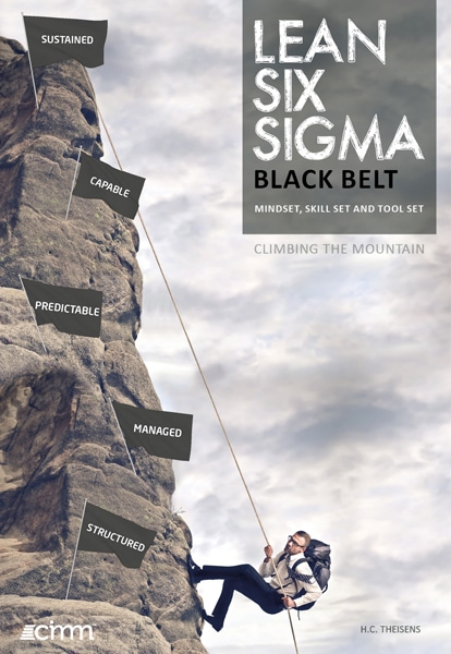 lean six sigma black belt boek