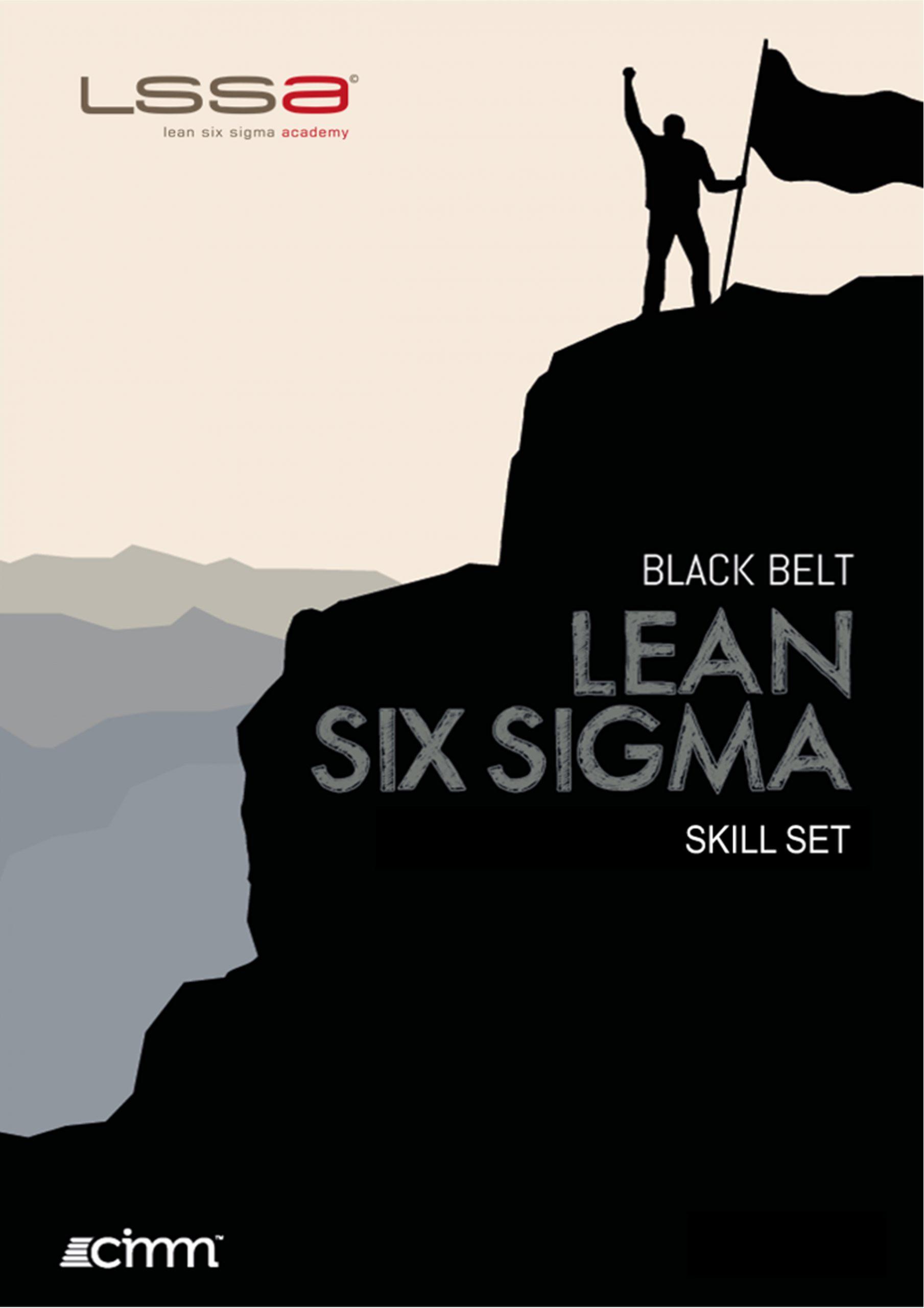 Lean Six Sigma Black Belt skill set