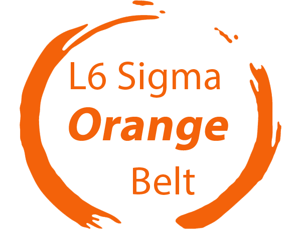 six sigma orange belt