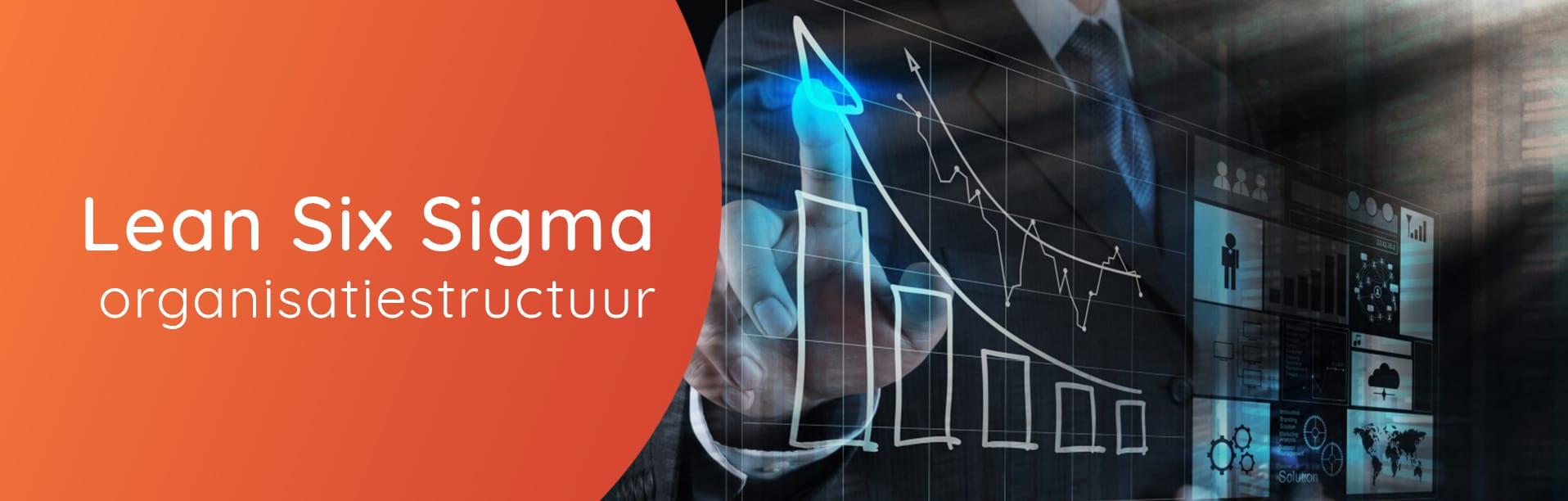 lean six sigma organisatiestructuur